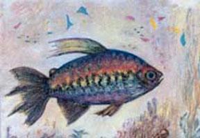 MC-695 TROPICAL FISH