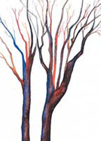 MC-683 BRANCHES OF COLOR