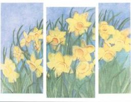 MC-750 EASTER DAFFODILS